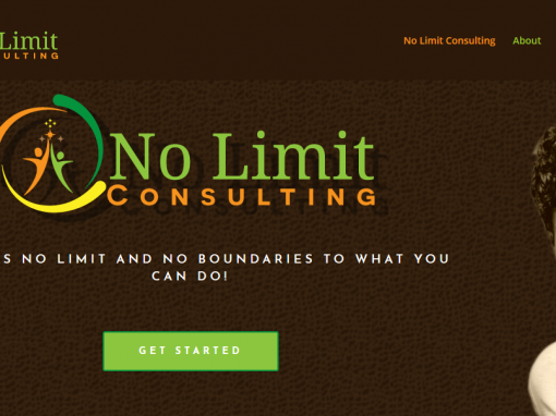 No Limit Consulting